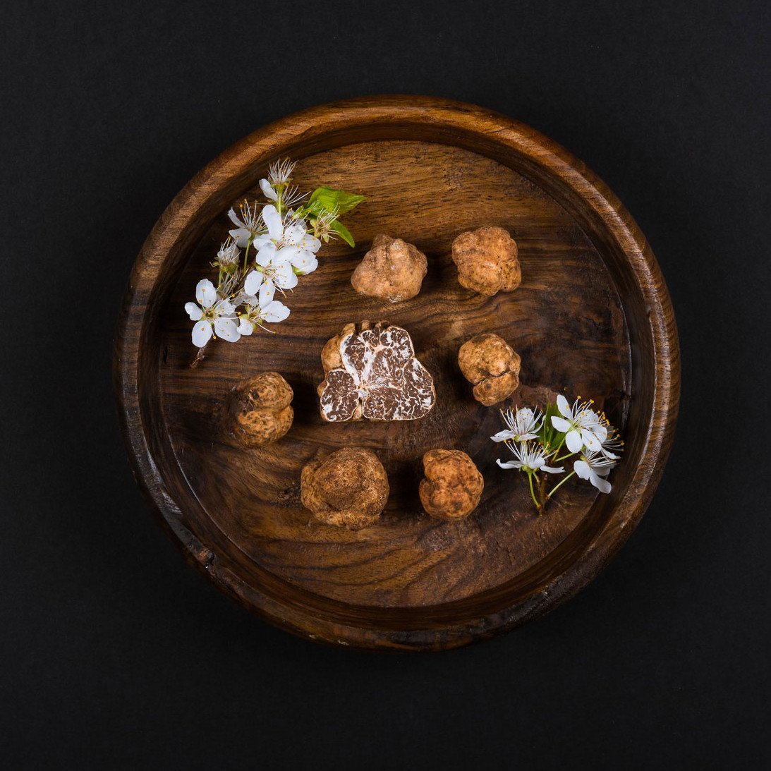 White Spring Truffle - Tuber Borchii